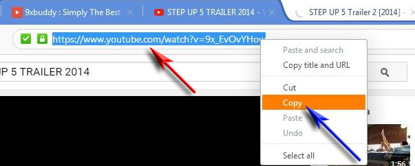 How To Download Your Favorite Online Videos Through 9xbuddy 2