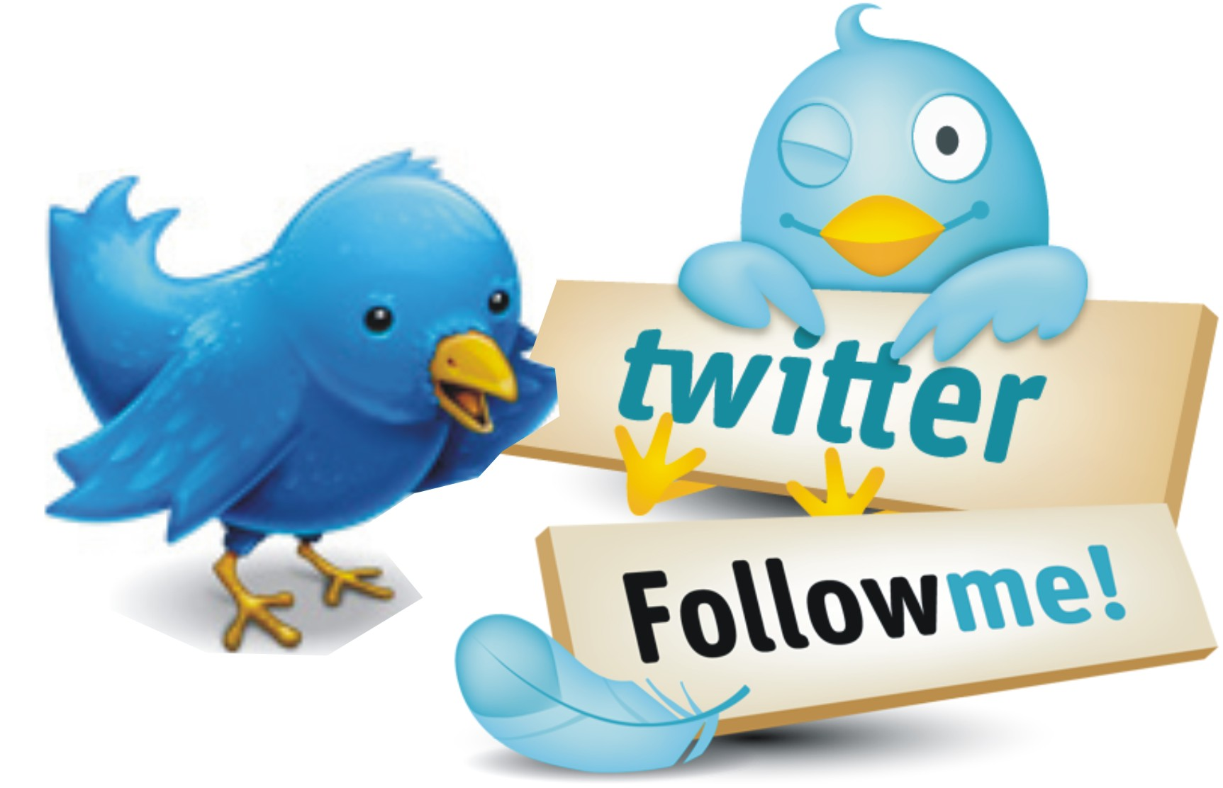 How To Get Endless Active Twitter Followers By Using Tweepi App